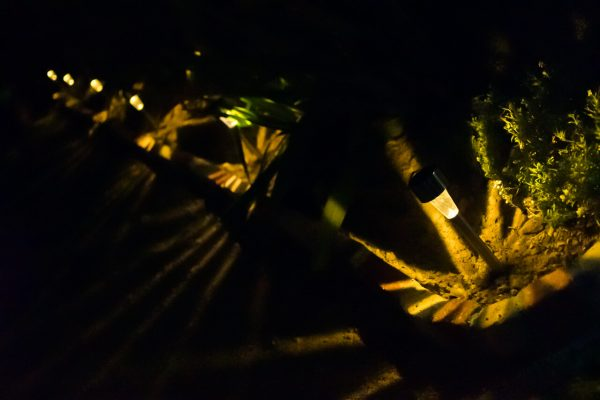 ガーデンライト点灯